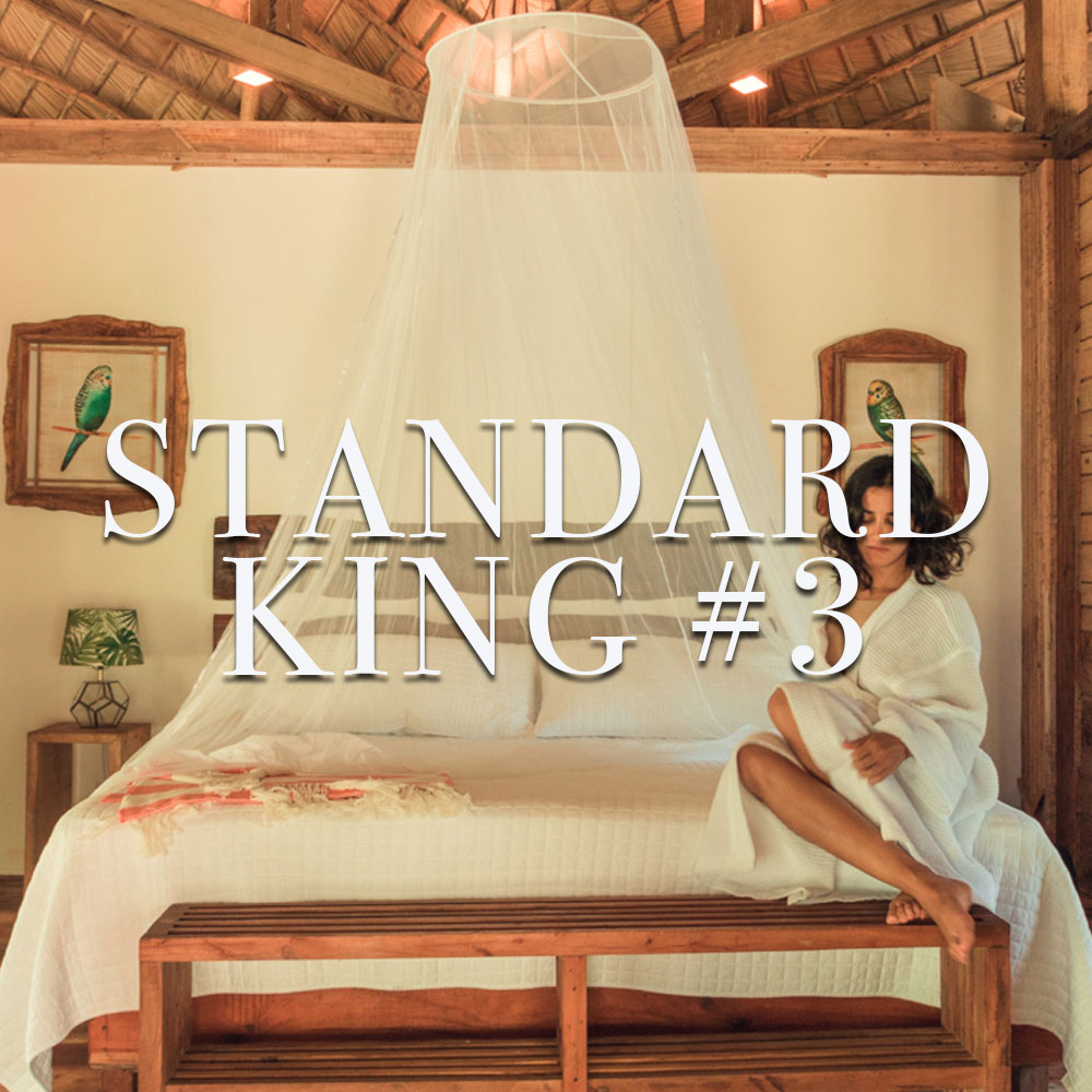 Standard King #3
